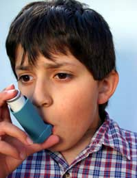 Common Triggers Of Asthma Attacks In